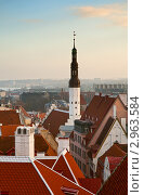 Купить «Вид на крыши старого города и башню церкви Святого Духа, Таллин», фото № 2963584, снято 4 ноября 2011 г. (c) Юлия Бабкина / Фотобанк Лори