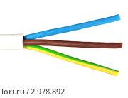 Купить «Многожильный электрический кабель», фото № 2978892, снято 25 ноября 2011 г. (c) Косоуров Юрий / Фотобанк Лори