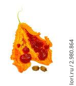 Купить «Зрелый плод момордики с семенами», эксклюзивное фото № 2980864, снято 18 июня 2019 г. (c) Blekcat / Фотобанк Лори