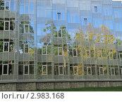 Стеклянная стена с отражающимися в ней деревьями. Стоковое фото, фотограф Сергей Павлов / Фотобанк Лори