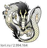 Купить «Белый (элемент-металл) или бело-черный восточный дракон», иллюстрация № 2994164 (c) Анастасия Некрасова / Фотобанк Лори