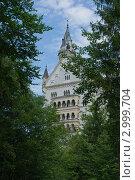 Старый замок (2011 год). Стоковое фото, фотограф Виталий Куценко / Фотобанк Лори