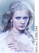 Купить «Красивая девушка в образе снежной королевы», фото № 3006544, снято 6 ноября 2011 г. (c) Вероника Галкина / Фотобанк Лори