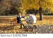 Девушка с коляской в осеннем парке. Стоковое фото, фотограф Котова Мария / Фотобанк Лори