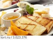 Купить «Сырная тарелка с тостами, медом и виноградом», фото № 3023376, снято 10 февраля 2011 г. (c) Dzianis Miraniuk / Фотобанк Лори