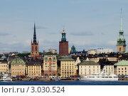 Вид на старый Стокгольм (2011 год). Редакционное фото, фотограф Сергей Разживин / Фотобанк Лори