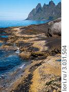 Купить «Берег», фото № 3031504, снято 26 июля 2011 г. (c) Роман Мухин / Фотобанк Лори