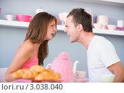 Купить «Мужчина и женщина кричат друг на друга», фото № 3038040, снято 22 января 2007 г. (c) Monkey Business Images / Фотобанк Лори