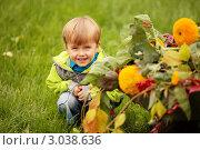 Мальчик, ребенок сидит улыбается с цветами. Стоковое фото, фотограф Светлана  Ковалевская / Фотобанк Лори