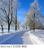 Купить «Зимний пейзаж, набережная Костромы», фото № 3039460, снято 21 января 2011 г. (c) ElenArt / Фотобанк Лори