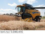 Купить «Уборка урожая зерновых культур», фото № 3044416, снято 3 августа 2011 г. (c) Михаил Рыбачек / Фотобанк Лори