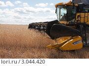 Купить «Уборка урожая зерновых культур», фото № 3044420, снято 3 августа 2011 г. (c) Михаил Рыбачек / Фотобанк Лори