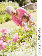 Купить «Бабушка с внучкой в летнем парке возле цветочной клумбы», фото № 3045912, снято 31 января 2006 г. (c) Monkey Business Images / Фотобанк Лори
