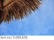 Купить «Пляжный зонтик и небо с облаками», фото № 3050616, снято 29 августа 2011 г. (c) Елена Шуршилина / Фотобанк Лори