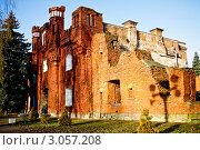 Купить «Холмские ворота Брестской крепости», фото № 3057208, снято 10 декабря 2011 г. (c) Наталья Белотелова / Фотобанк Лори