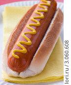 Купить «Хот-дог с горчицей», фото № 3060608, снято 4 марта 2008 г. (c) Monkey Business Images / Фотобанк Лори