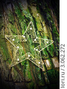 Звездочка с неба. Стоковое фото, фотограф Юлия Нигматова / Фотобанк Лори