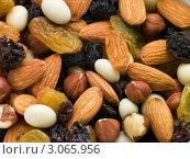 Купить «Смесь орехов с сухофруктами, крупным планом», фото № 3065956, снято 11 декабря 2006 г. (c) Monkey Business Images / Фотобанк Лори