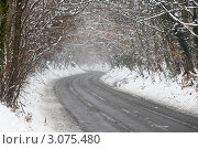 Дорога через заснеженный лес, фото № 3075480, снято 8 февраля 2007 г. (c) Monkey Business Images / Фотобанк Лори