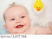 Купить «Портрет малыша в пенной ванне с резиновым утенком (крупный план)», фото № 3077164, снято 11 июня 2009 г. (c) Monkey Business Images / Фотобанк Лори