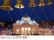 Рождество. Софийский собор в Пушкине. (2010 год). Стоковое фото, фотограф Vladimir Kolobov / Фотобанк Лори