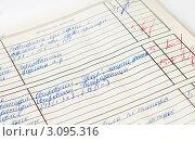 Купить «Страница школьного дневника с отличными оценками», эксклюзивное фото № 3095316, снято 27 декабря 2011 г. (c) Игорь Низов / Фотобанк Лори