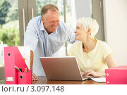 Купить «Пожилая женщина с сыном работает за ноутбуком дома», фото № 3097148, снято 27 февраля 2010 г. (c) Monkey Business Images / Фотобанк Лори