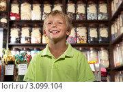 Купить «Радостный мальчик на фоне витрины магазина сладостей», фото № 3099104, снято 20 июля 2010 г. (c) Monkey Business Images / Фотобанк Лори