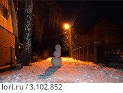 Купить «Снеговик. Улица. Фонарь», фото № 3102852, снято 1 января 2012 г. (c) Зобков Георгий / Фотобанк Лори