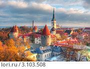 Купить «Вид на Старый город в Таллине, Эстония», эксклюзивное фото № 3103508, снято 13 октября 2019 г. (c) Литвяк Игорь / Фотобанк Лори