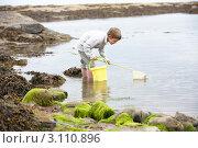 Купить «Мальчик ищет ракушки стоя в воде у моря среди камней», фото № 3110896, снято 23 августа 2010 г. (c) Monkey Business Images / Фотобанк Лори