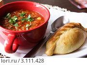 Купить «Блюда литовской кухни: острый суп и пирожок кибинай», фото № 3111428, снято 11 марта 2011 г. (c) Наталья Белотелова / Фотобанк Лори
