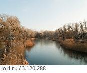 Озеро в парке (2011 год). Стоковое фото, фотограф Котенко Андрей Владимирович / Фотобанк Лори