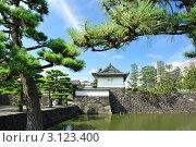 Купить «Императорский дворец в Токио», фото № 3123400, снято 30 июля 2010 г. (c) Николай Охитин / Фотобанк Лори