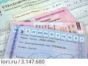Купить «Документы на автомобиль», фото № 3147680, снято 15 января 2012 г. (c) Мастепанов Павел / Фотобанк Лори