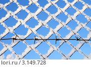 Купить «Фрагмент забора с колючей проволокой», фото № 3149728, снято 16 января 2012 г. (c) Икан Леонид / Фотобанк Лори