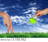 Купить «Руки с игрушечной лейкой поливают зелёный газон», иллюстрация № 3150952 (c) Sergey Nivens / Фотобанк Лори