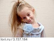Купить «Портрет милой девочки в нарядном платье», эксклюзивное фото № 3157184, снято 6 января 2012 г. (c) Илюхина Наталья / Фотобанк Лори