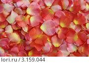 Фон из лепестков розы. Стоковое фото, фотограф Ирина Юрченкова / Фотобанк Лори
