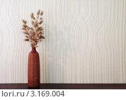 Сухоцветы в вазе на фоне стены. Стоковое фото, фотограф vlntn / Фотобанк Лори