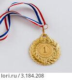 Купить «Медаль за первое место», эксклюзивное фото № 3184208, снято 23 января 2012 г. (c) Игорь Низов / Фотобанк Лори