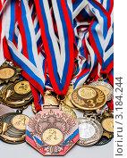 Купить «Много спортивных медалей», эксклюзивное фото № 3184244, снято 23 января 2012 г. (c) Игорь Низов / Фотобанк Лори