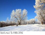 Купить «Зимний солнечный пейзаж», фото № 3190316, снято 3 января 2012 г. (c) Михаил Коханчиков / Фотобанк Лори