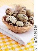 Купить «Перепелиные яйца в плетеной корзинке», фото № 3190516, снято 20 февраля 2011 г. (c) Юлия Маливанчук / Фотобанк Лори