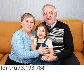 Купить «Пенсионеры с ребенком», эксклюзивное фото № 3193784, снято 28 января 2012 г. (c) Куликова Вероника / Фотобанк Лори