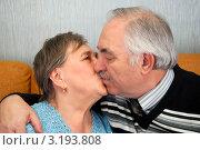 Купить «Пенсионеры целуются», эксклюзивное фото № 3193808, снято 28 января 2012 г. (c) Куликова Вероника / Фотобанк Лори