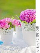 Купить «Розовые цветы на свадебном столе», фото № 3198068, снято 18 сентября 2011 г. (c) Алена Роот / Фотобанк Лори