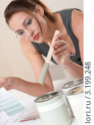 Купить «Молодая женщина-дизайнер интерьера сравнивает цвет краски с палитрой цветов», фото № 3199248, снято 16 ноября 2009 г. (c) CandyBox Images / Фотобанк Лори