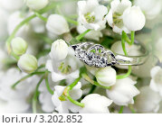 Купить «Кольцо с бриллиантами на фоне весенних цветов», фото № 3202852, снято 28 мая 2011 г. (c) ElenArt / Фотобанк Лори
