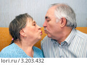 Пожилые люди хотят поцеловаться. Стоковое фото, фотограф Куликова Вероника / Фотобанк Лори